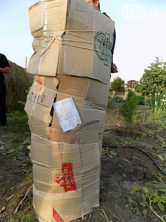 Более полсотни кустов мака нашли у жителя Одесской области (ФОТО), фото-2