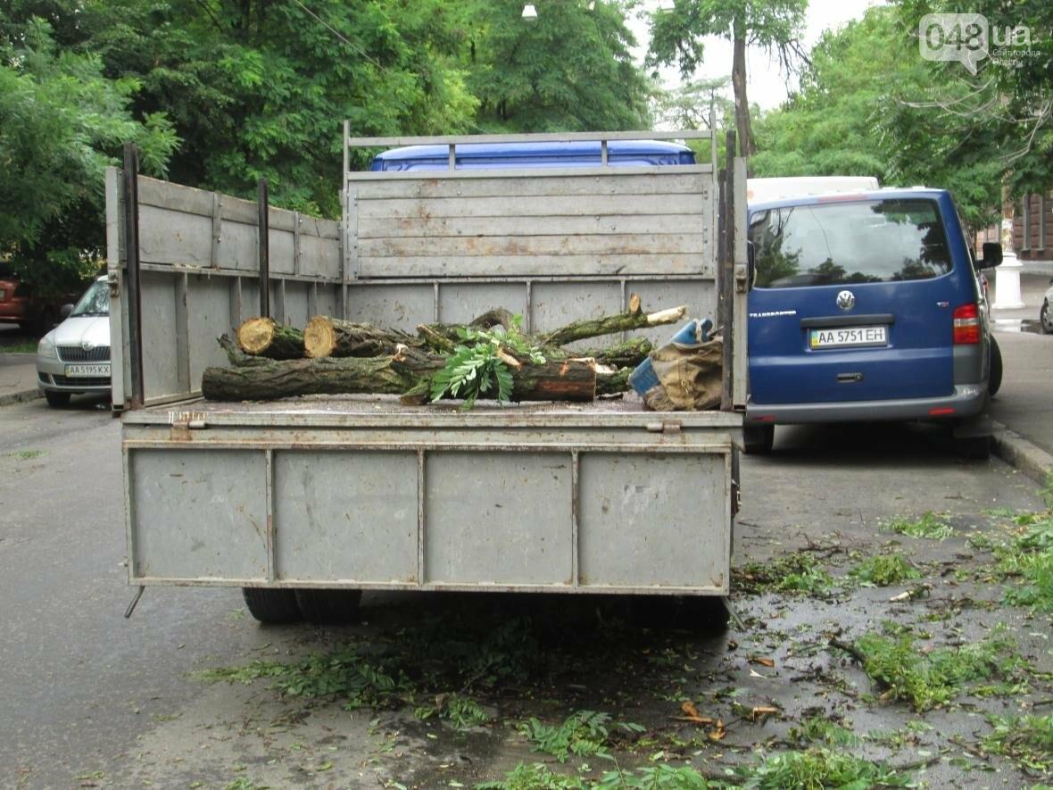 В Одессе гигантская ветка рухнула на террасу ресторана (ФОТО), фото-1
