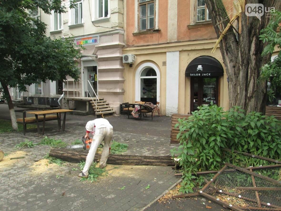 В Одессе гигантская ветка рухнула на террасу ресторана (ФОТО), фото-5