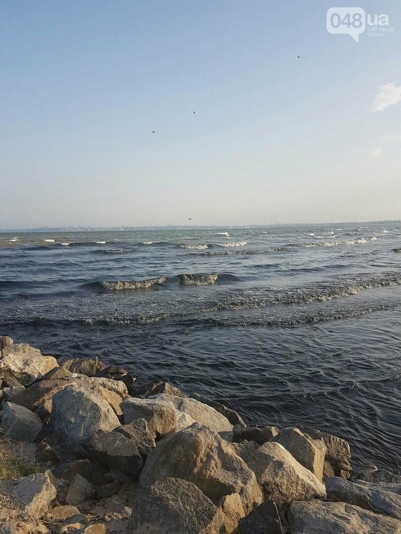 В Одессе загнивает пляж: у моря находиться невозможно (ФОТО), фото-4