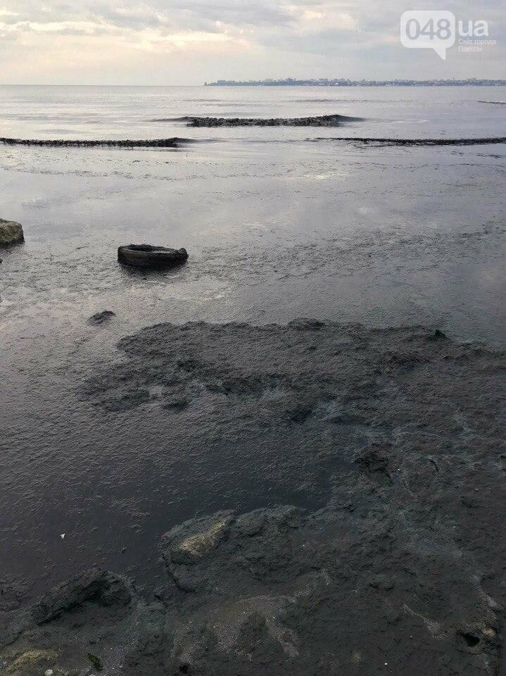 В Одессе загнивает пляж: у моря находиться невозможно (ФОТО), фото-1