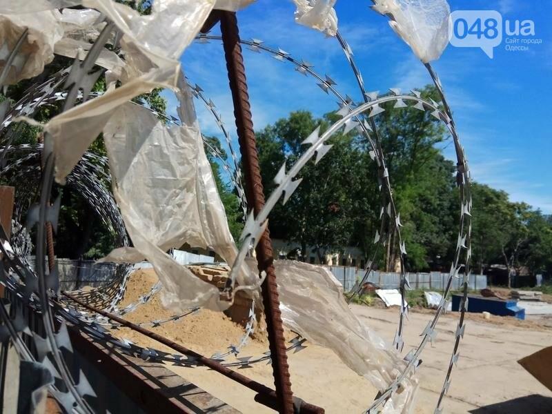 Наглый застройщик положил глаз на Одесский ботанический сад (ФОТО), фото-4