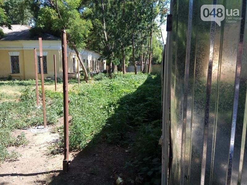 Наглый застройщик положил глаз на Одесский ботанический сад (ФОТО), фото-5