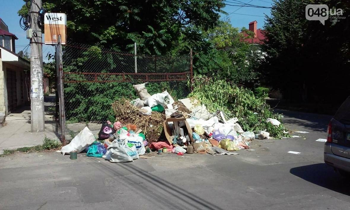 Туристы в шоке: В разгар курортного сезона из Одессы перестали вывозить мусор (ФОТО), фото-3