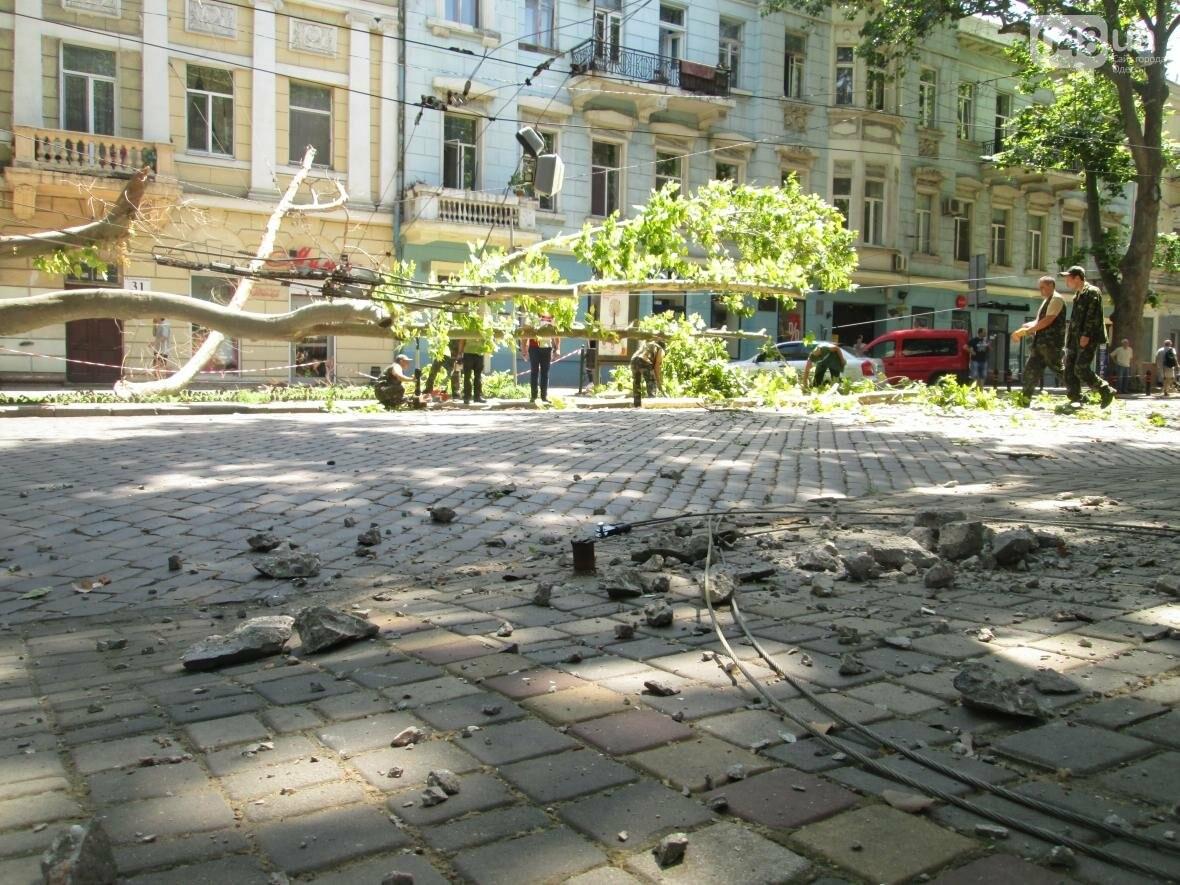 В центре Одессы заблокировано движение - ликвидируют последствия обвала зеленого исполина (ФОТО), фото-5