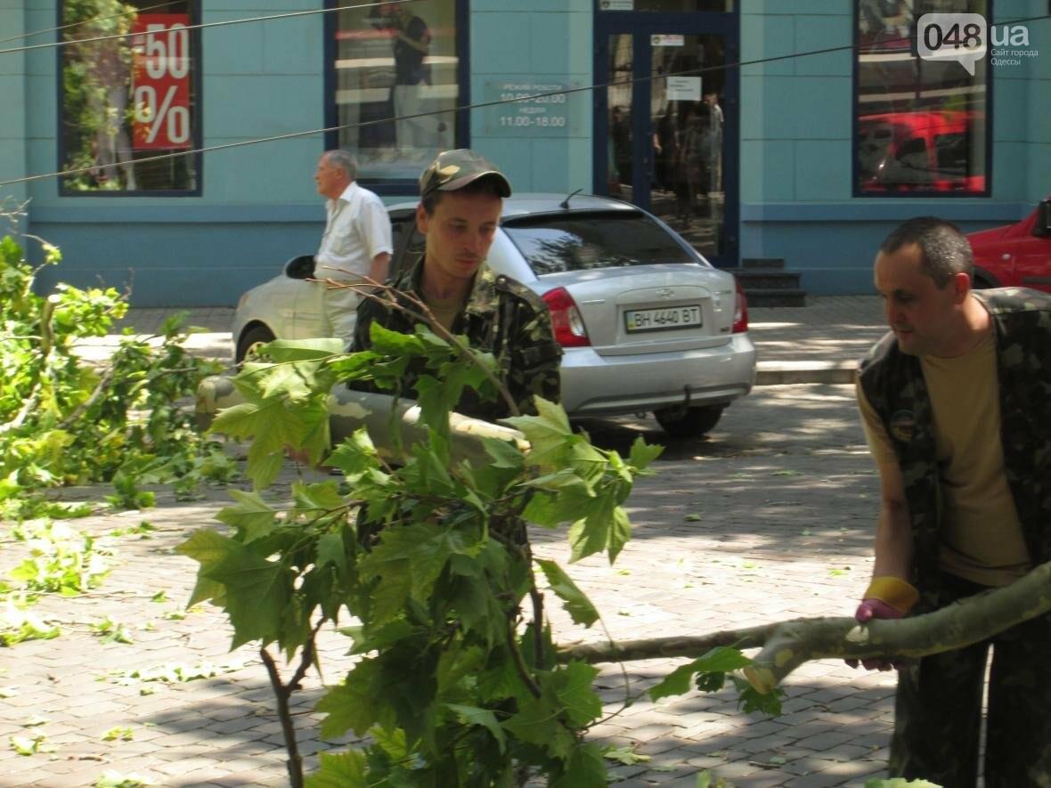 В центре Одессы заблокировано движение - ликвидируют последствия обвала зеленого исполина (ФОТО), фото-3