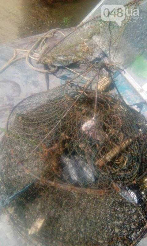 Одесские «правосеки» отобрали у одессита улов раков (ФОТО), фото-1