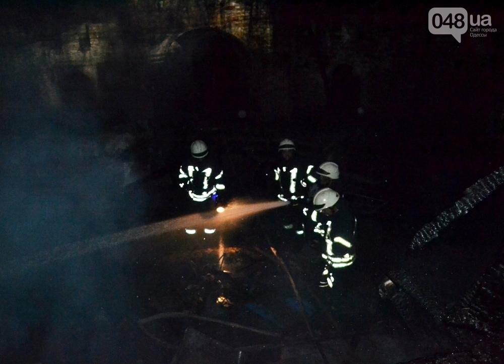 В одесском парке полыхал пожар - горела крепость (ФОТО, ВИДЕО), фото-1