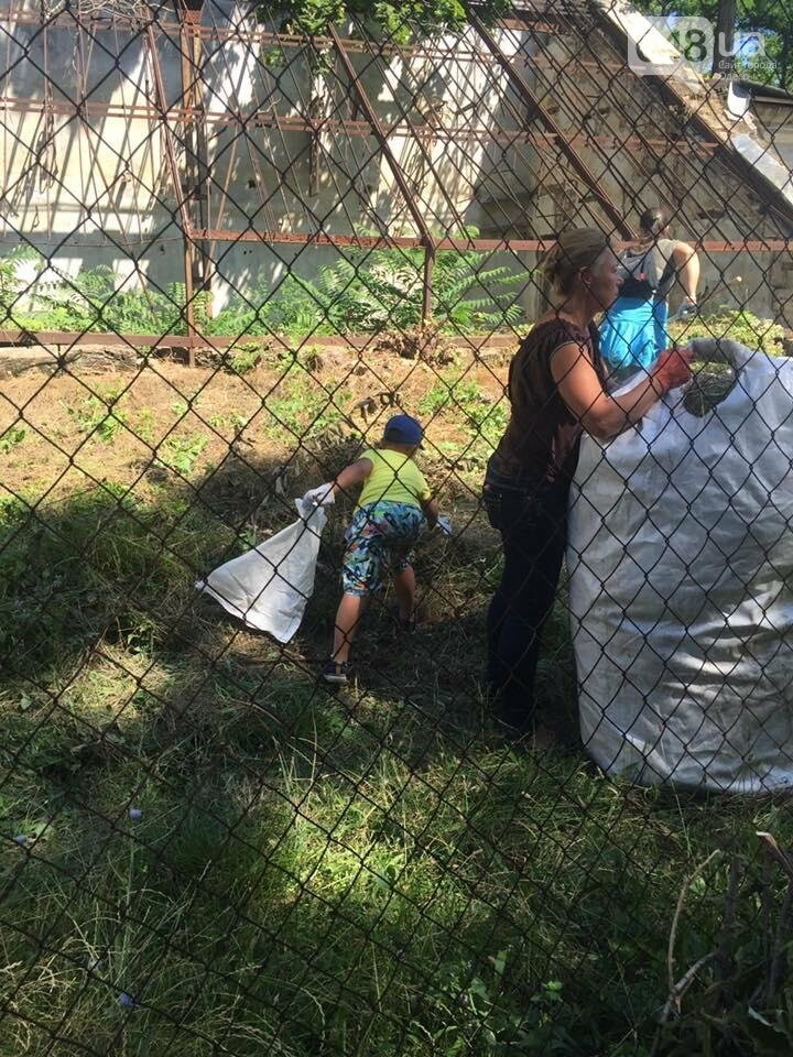 Как одесситы оранжерею Маразли спасали (ФОТО), фото-4