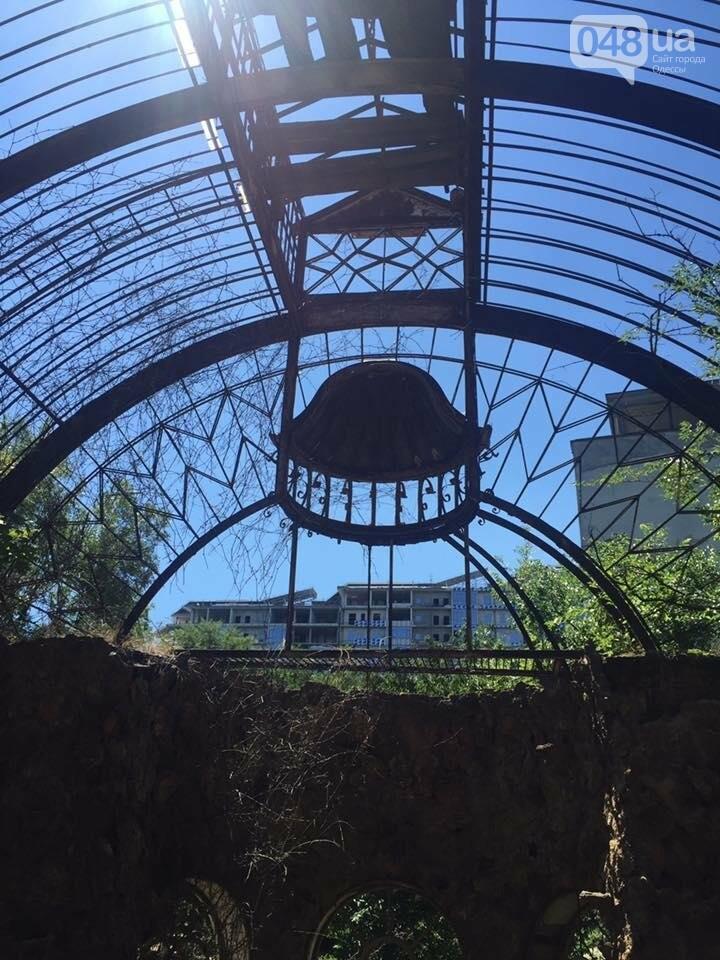 Как одесситы оранжерею Маразли спасали (ФОТО), фото-5