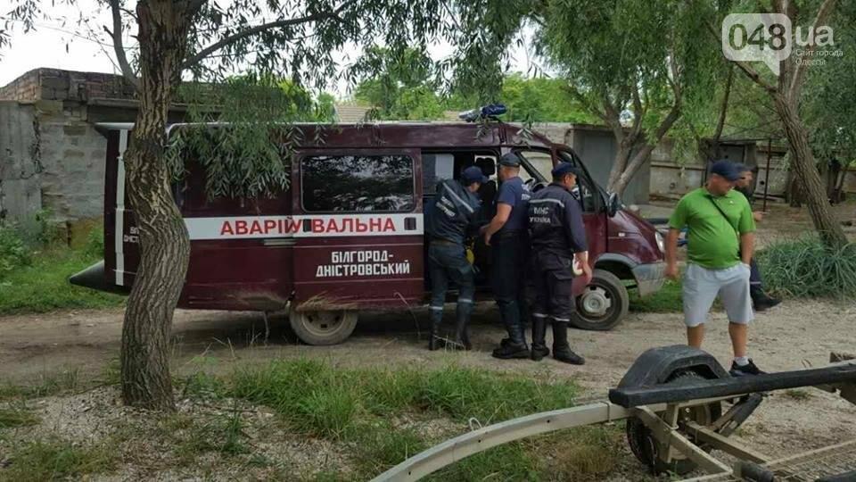 В Одесской области жители спасали пьяных рыбаков (ФОТО), фото-3