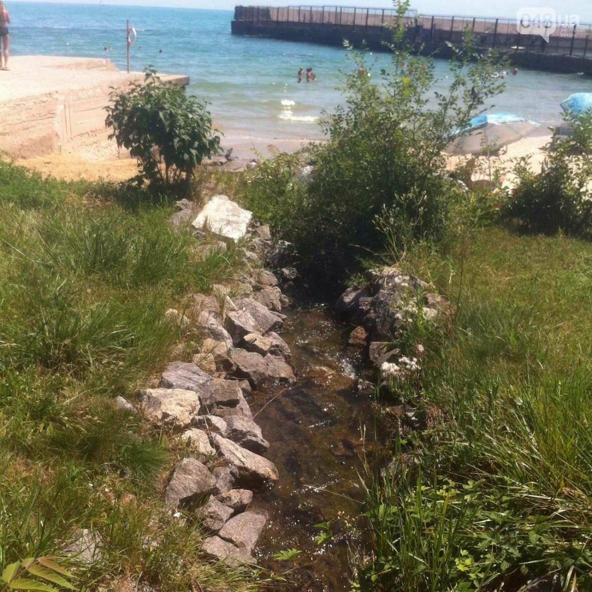 Один из красивейших одесских пляжей забросали фекалиями: от горсовета нет реакции (ФОТО), фото-5