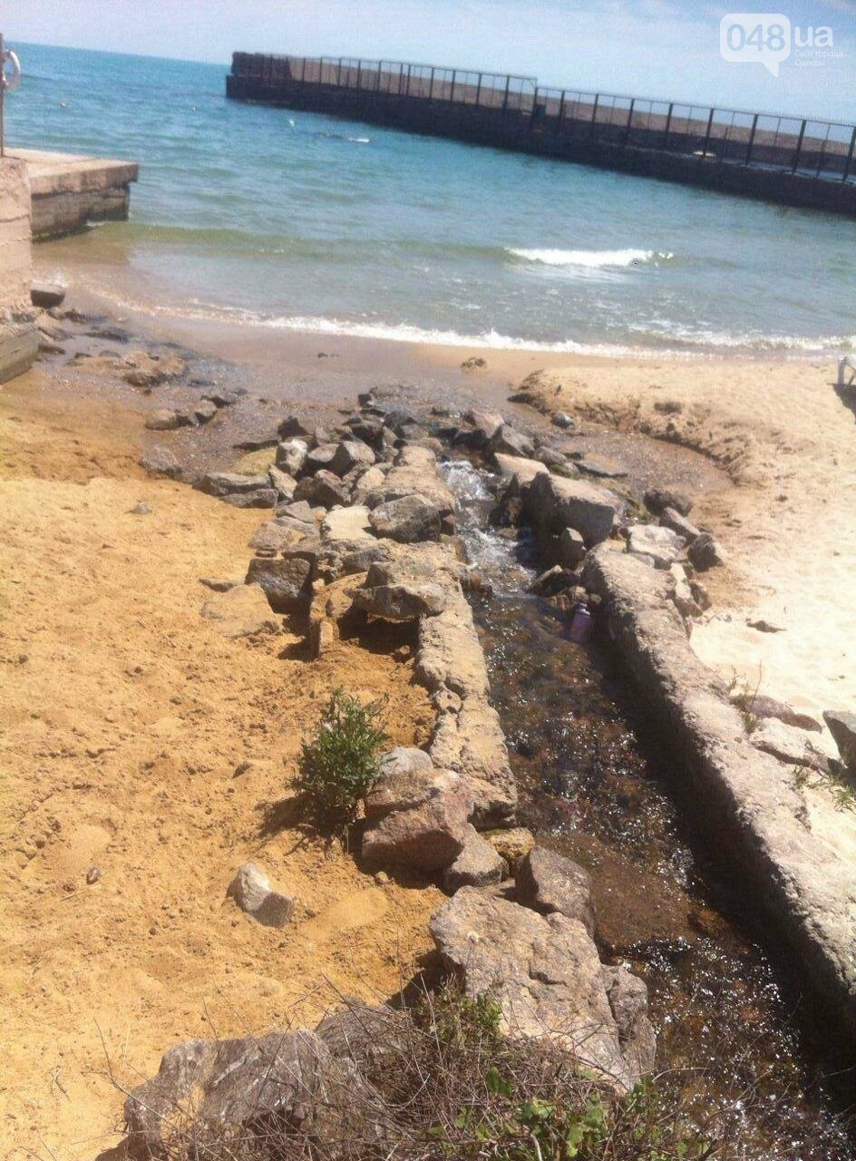 Один из красивейших одесских пляжей забросали фекалиями: от горсовета нет реакции (ФОТО), фото-6