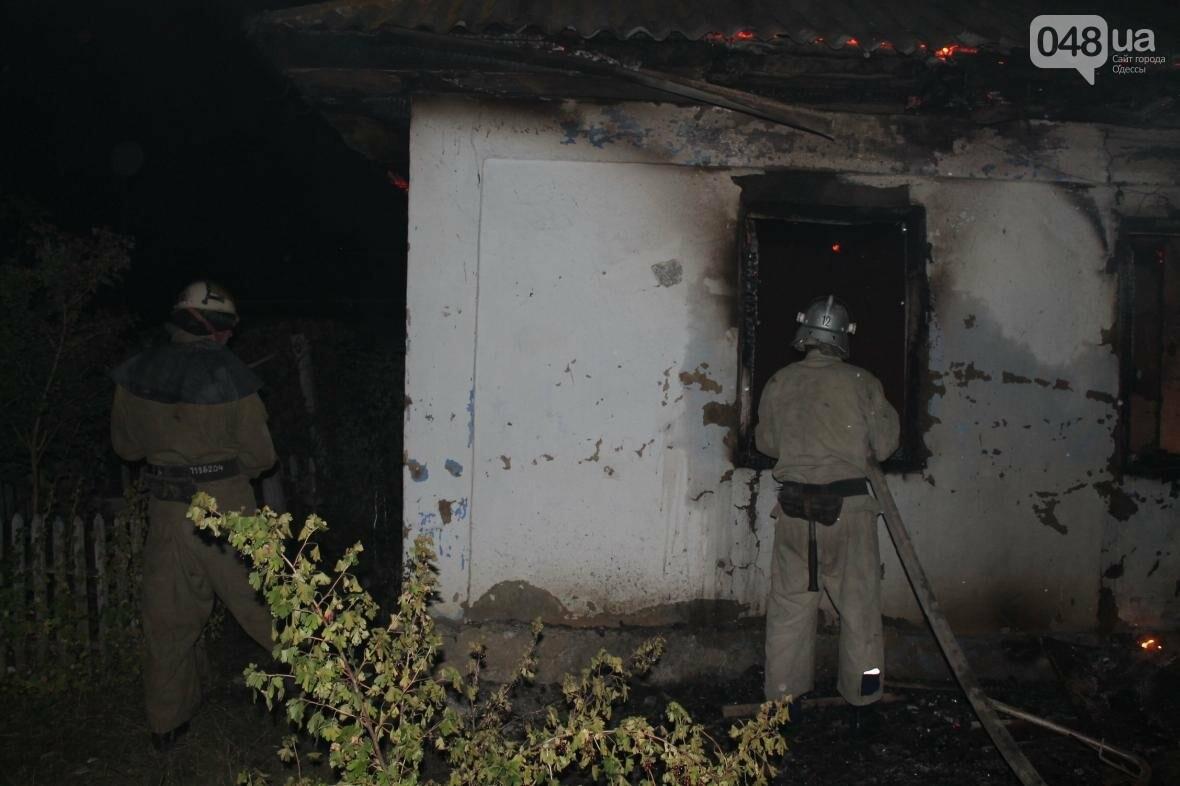 В время пожара в Одесской области погиб хозяин дома (ФОТО), фото-4