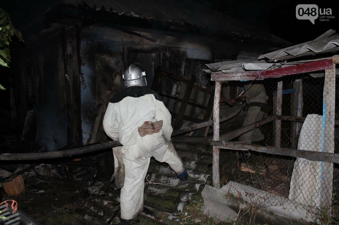 В время пожара в Одесской области погиб хозяин дома (ФОТО), фото-3