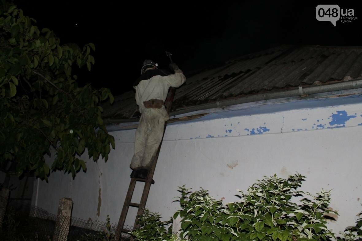 В время пожара в Одесской области погиб хозяин дома (ФОТО), фото-1