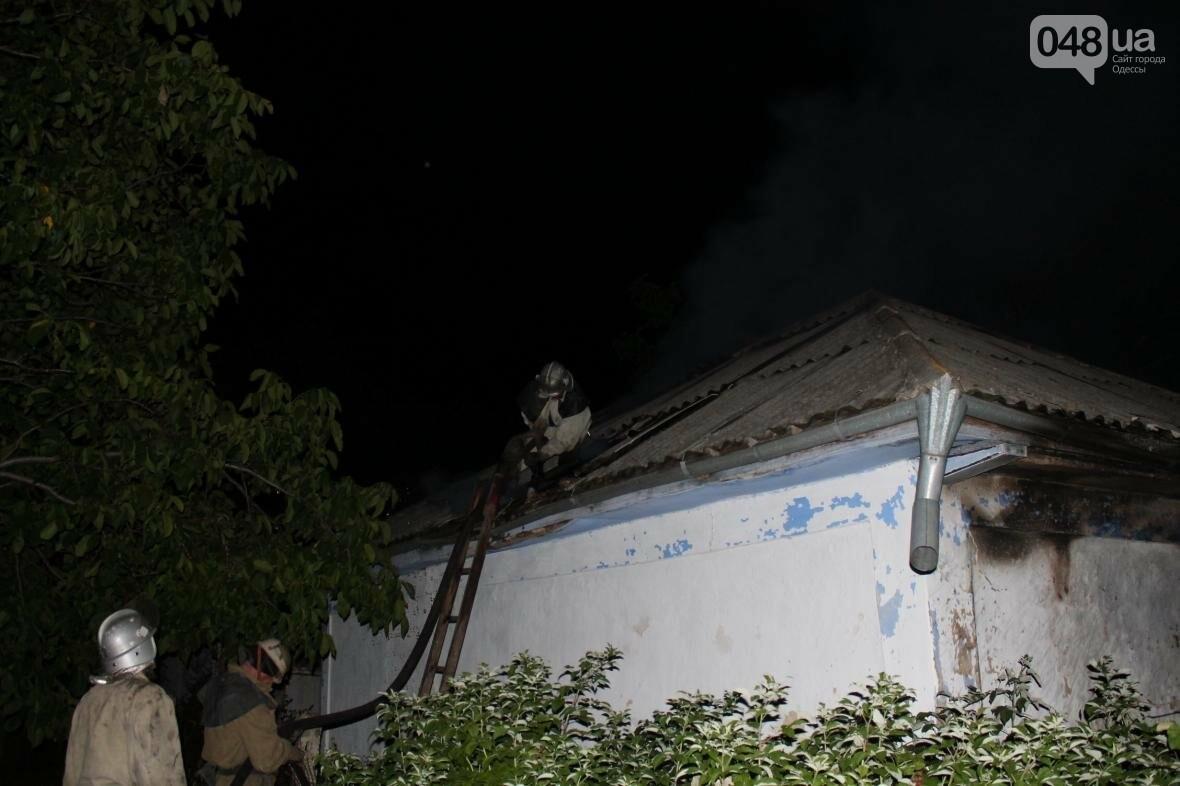 В время пожара в Одесской области погиб хозяин дома (ФОТО), фото-2