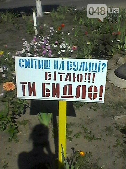 """Под Одессой нашли оригинальный способ бороться со """"свиньями"""" (ФОТО), фото-1"""