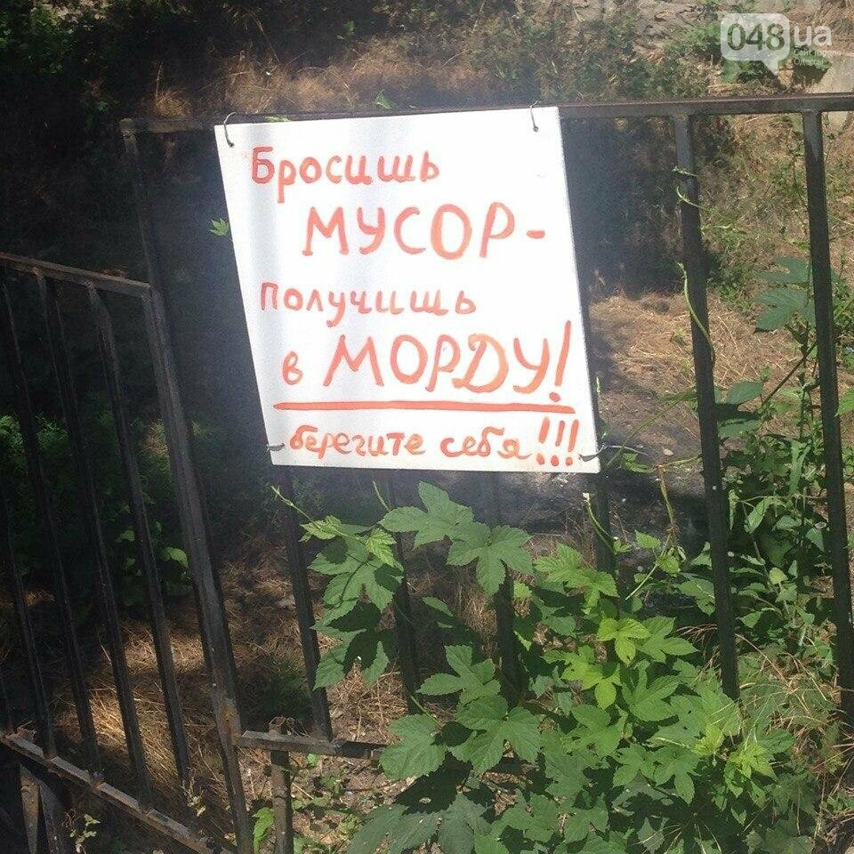 """Под Одессой нашли оригинальный способ бороться со """"свиньями"""" (ФОТО), фото-3"""