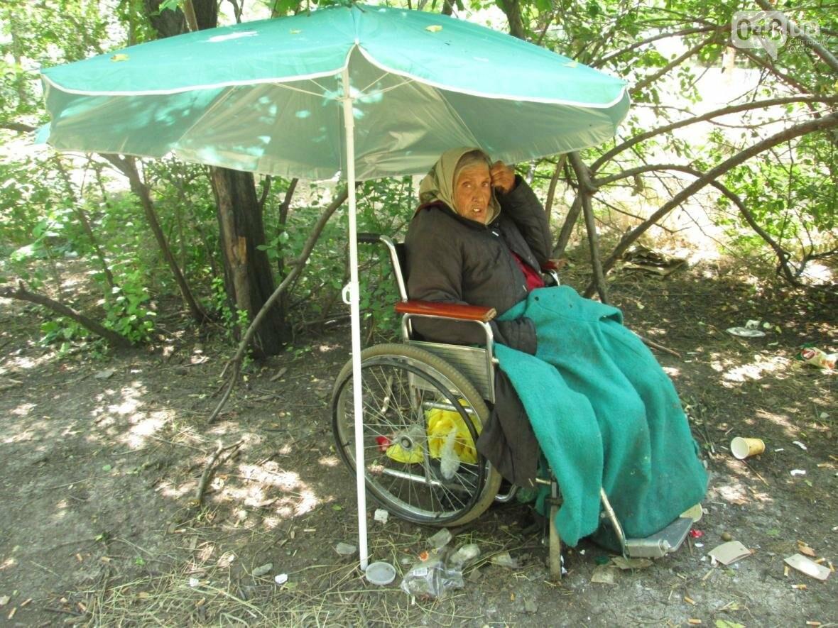 В одесском парке брошенная сыном старушка-инвалид ночует под открытым небом (ФОТО, ВИДЕО), фото-1