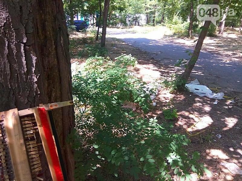 Обнаружен самый жуткий уголок одесского парка (ФОТОФАКТ), фото-2