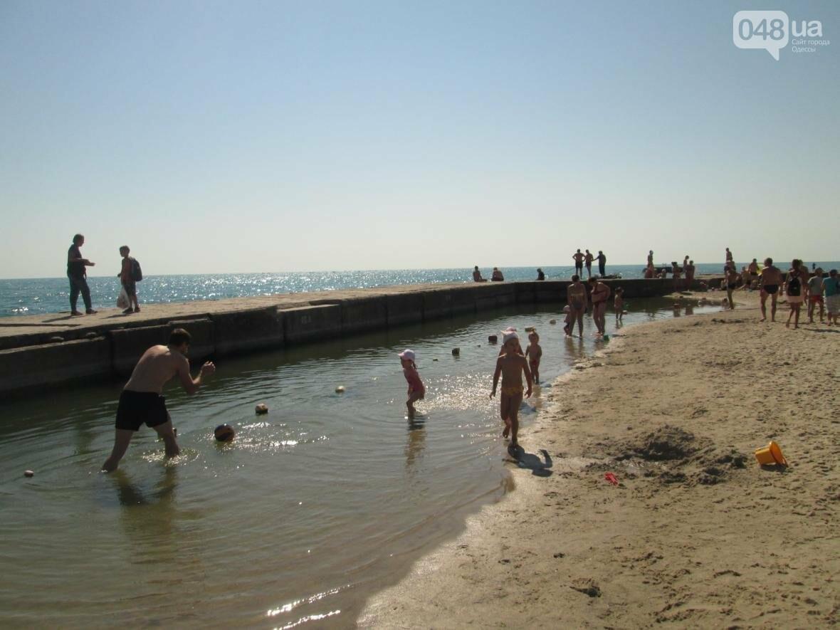 Базар, стройка и рак-отшельник: чем еще удивит одесский пляж (ФОТО), фото-16