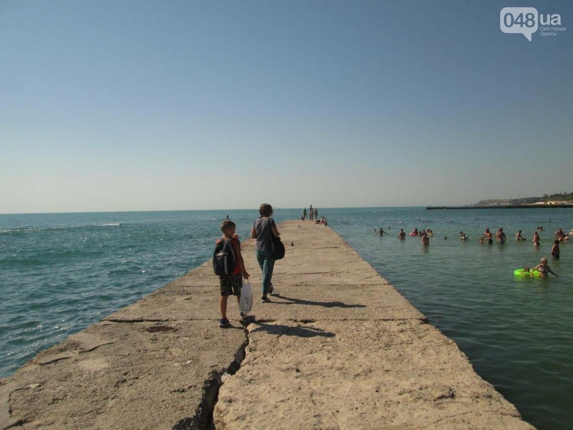 Базар, стройка и рак-отшельник: чем еще удивит одесский пляж (ФОТО), фото-10