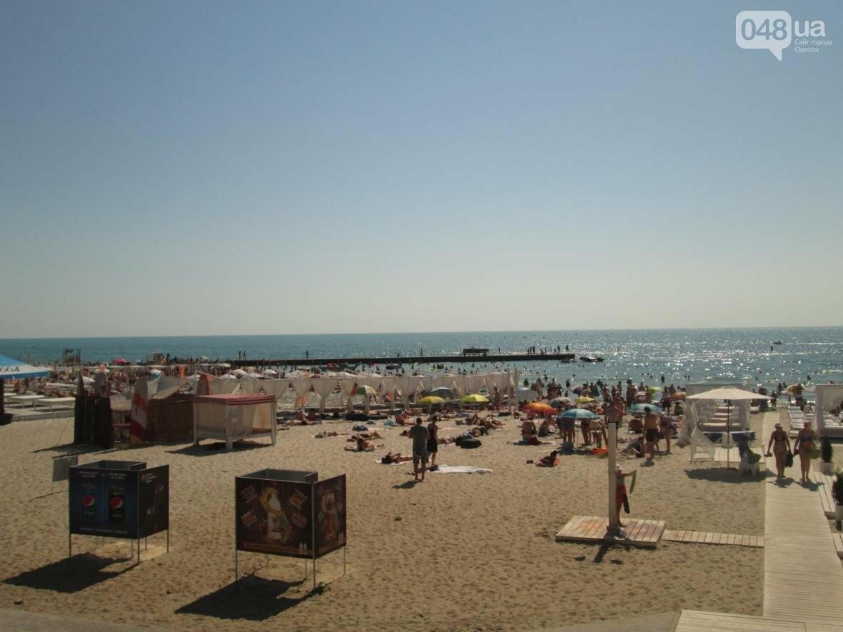 Базар, стройка и рак-отшельник: чем еще удивит одесский пляж (ФОТО), фото-9