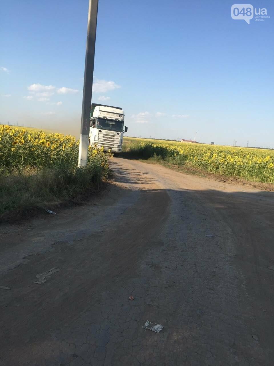 Из-за километров стоящих фур одесситы въезжают в город по полям (ФОТО), фото-6