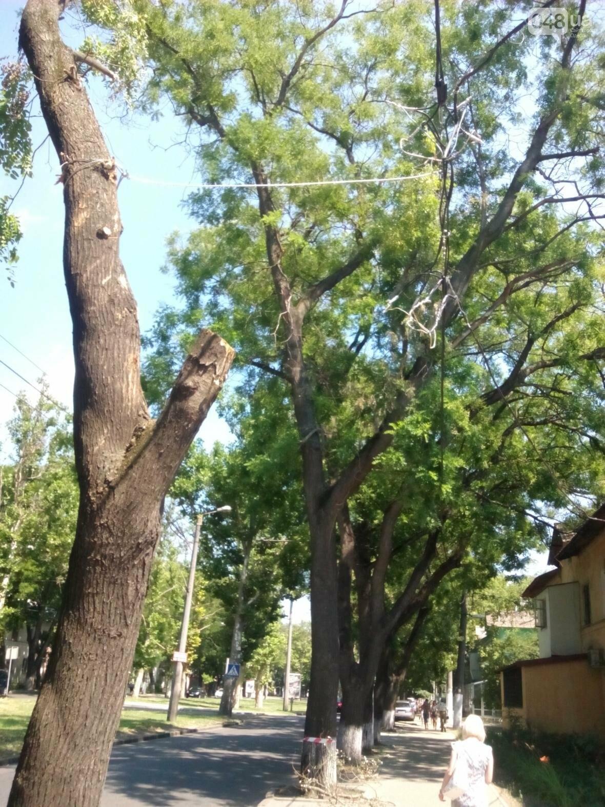 В Одессе упал столб. Реакция электриков была непредсказуемой... (ФОТО), фото-1