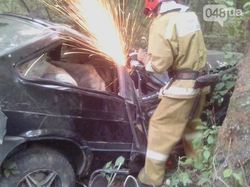 На севере Одесской области автомобиль расплющило о дерево (ФОТО), фото-1