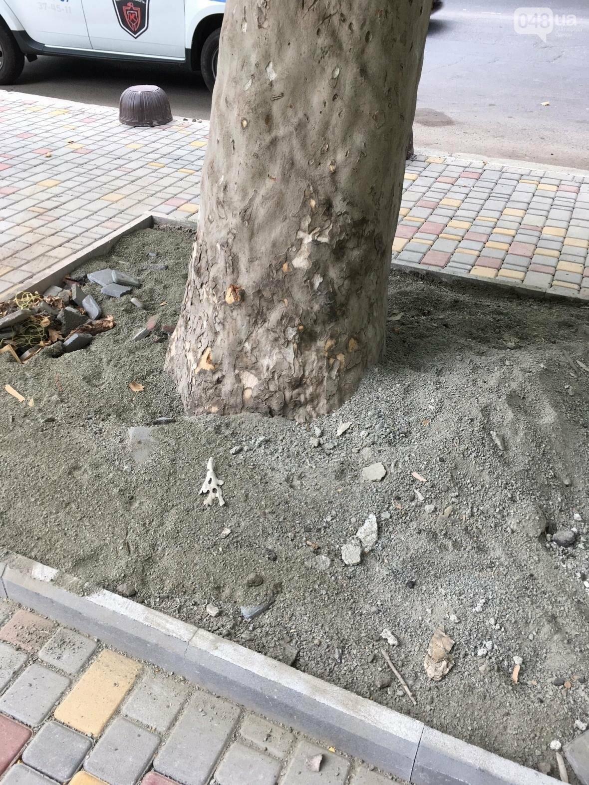 Одесские платаны засыпали строительной смесью: ни одного шанса выжить (ФОТО), фото-1