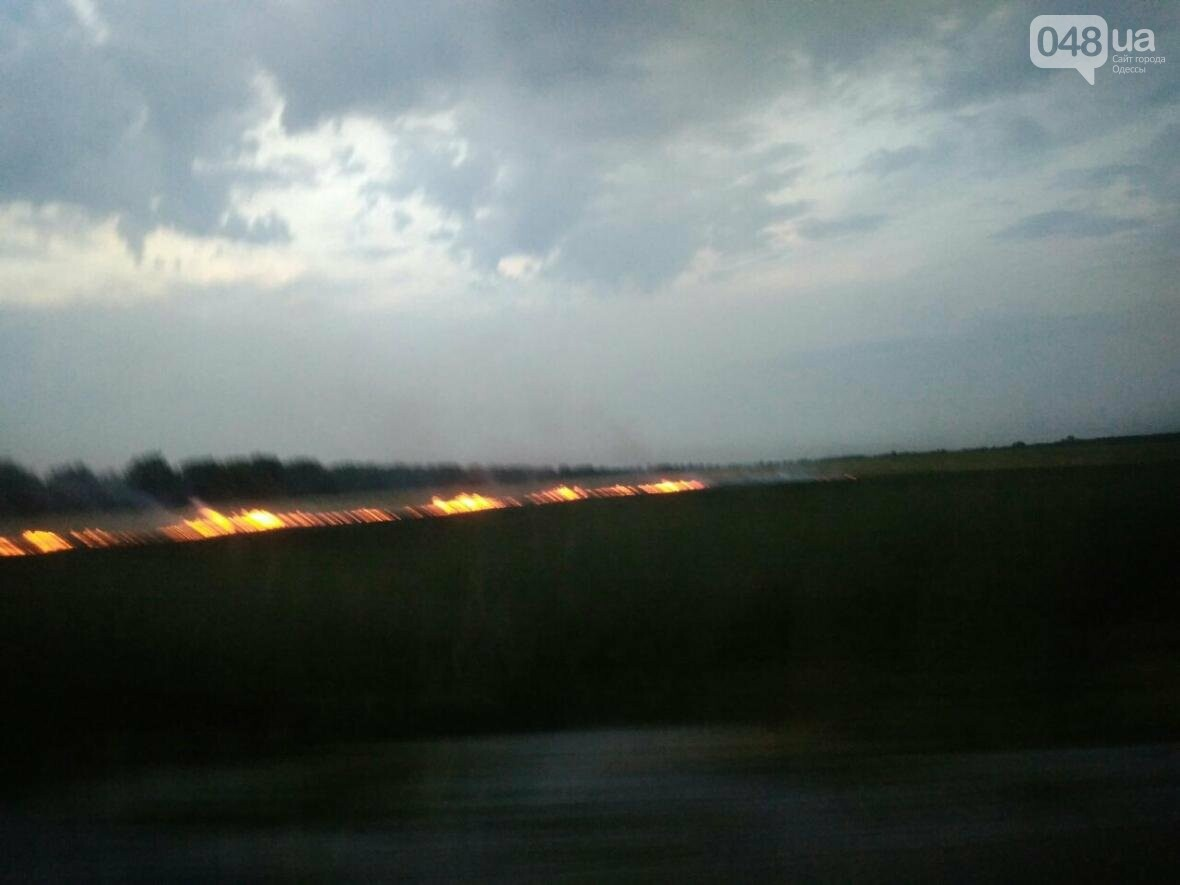 В Одесской области жгут поля (ФОТО), фото-1