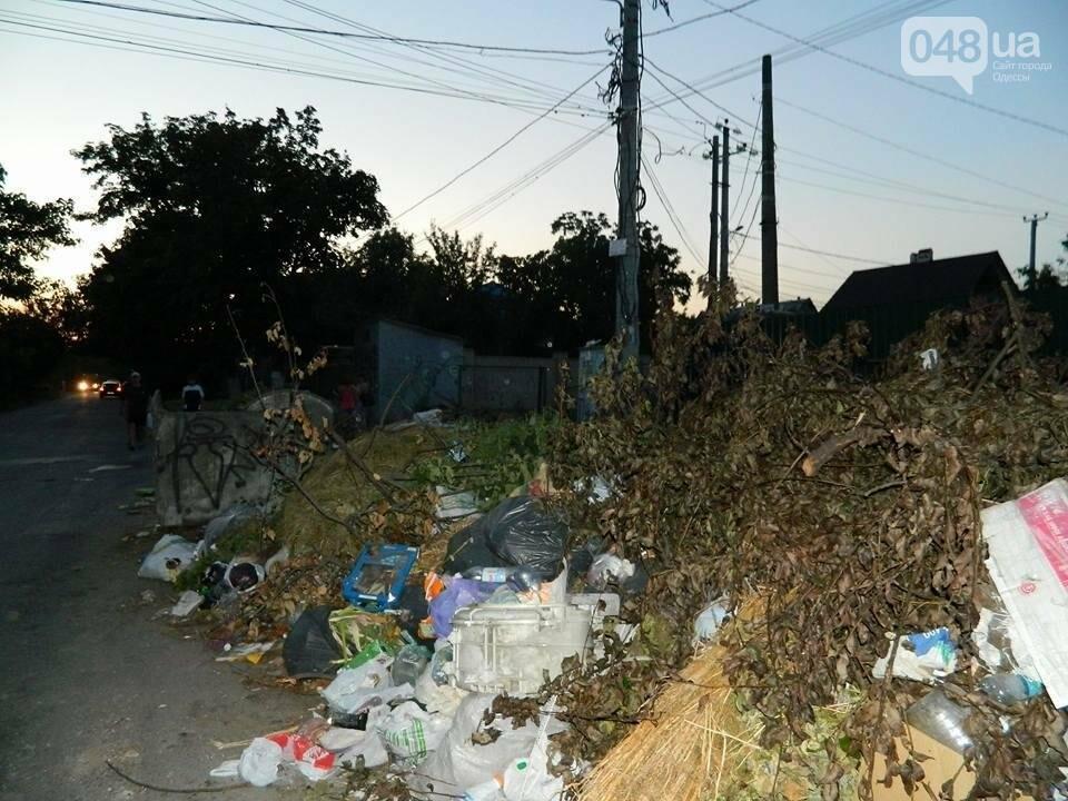 На одесской Чубаевке устроили антисанитарию и мусорную свалку (ФОТО), фото-2