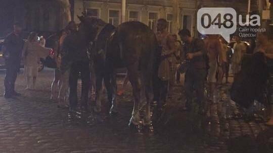 В центре Одессы загнали почти до смерти лошадь (ФОТО, ВИДЕО, ОБНОВЛЕНО), фото-2