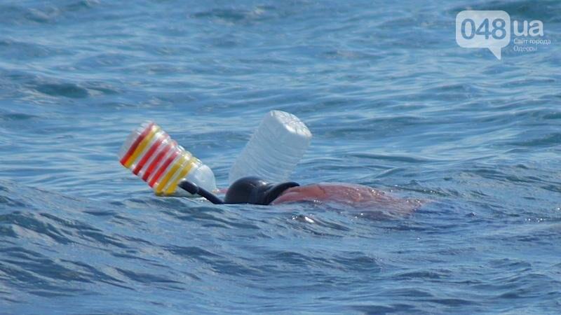 «Нерезиновые» одесские пляжи пока еще вмещают спасающихся от жары (ФОТО), фото-7
