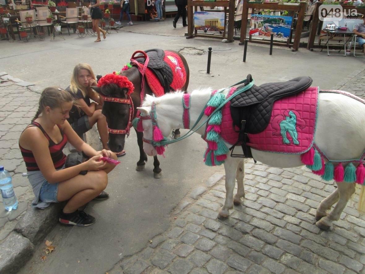 В Одессе на Дерибасовской лошадей поят из туалета (ФОТО, ВИДЕО), фото-1