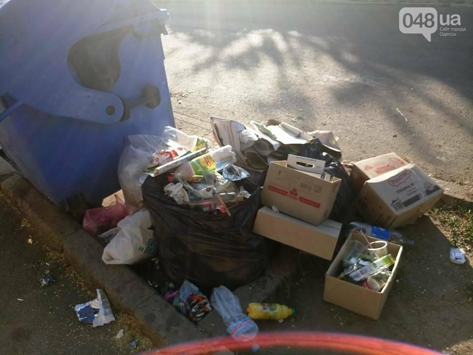 Курортный район Одессы утопает в мусоре, фото-1