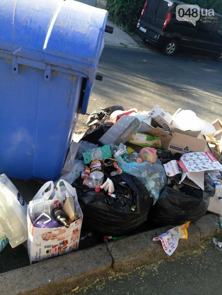 Курортный район Одессы утопает в мусоре, фото-2