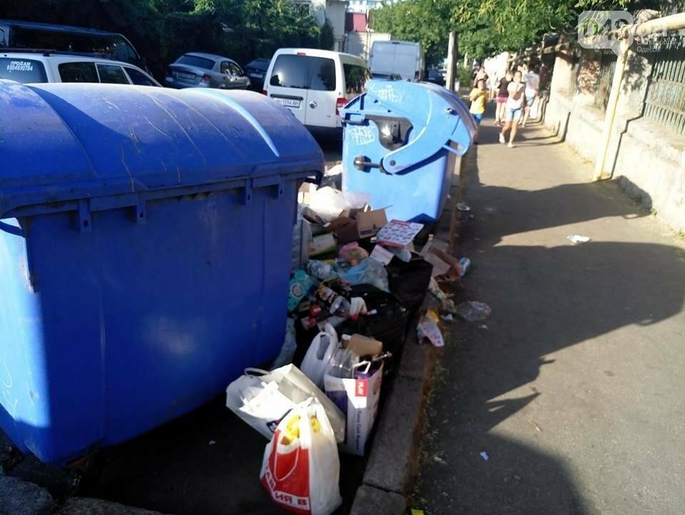 Курортный район Одессы утопает в мусоре, фото-3