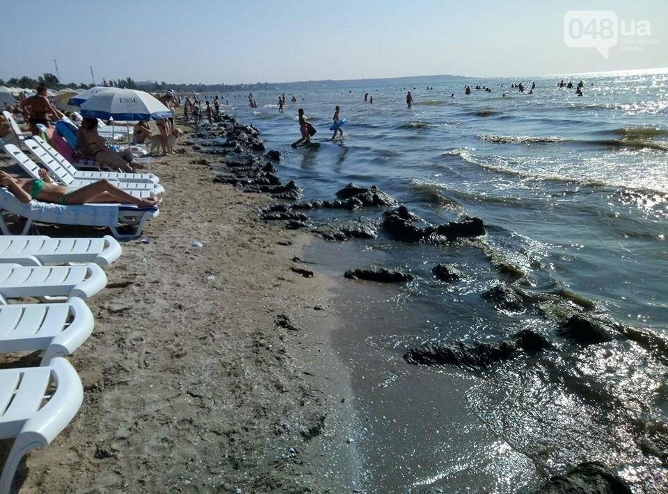 Горы гниющих водорослей перекрыли проходы к морю в Одессе (ФОТО), фото-1