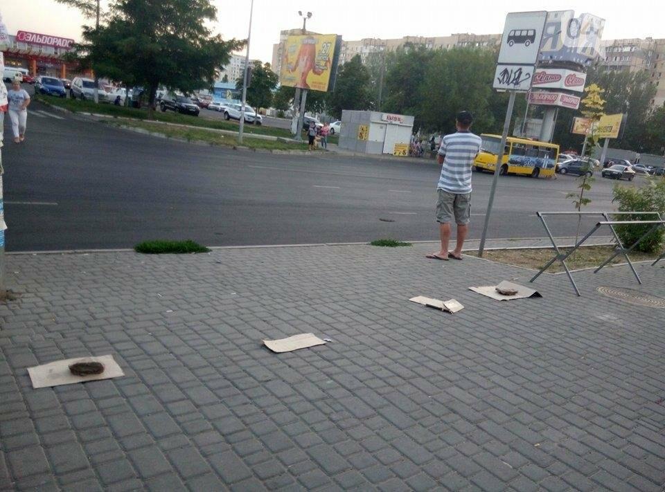 В Одессе улицу распределили между собой торговцы-нелегалы (ФОТО), фото-2