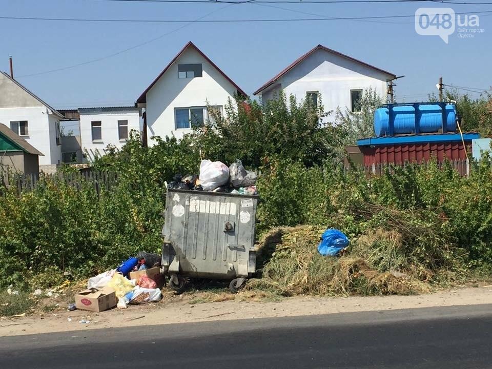 Обратная сторона Затоки: Крупнейший морской курорт Украины утопает в мусоре (ФОТО), фото-1