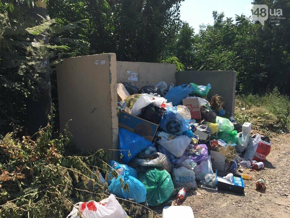 Обратная сторона Затоки: Крупнейший морской курорт Украины утопает в мусоре (ФОТО), фото-3