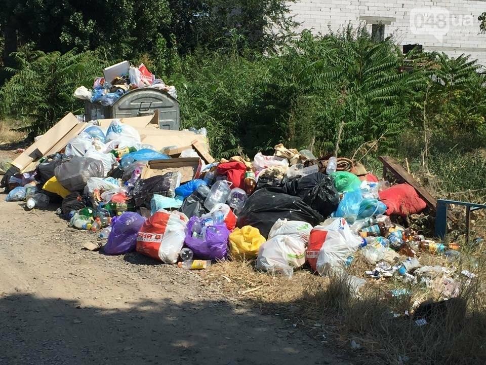 Обратная сторона Затоки: Крупнейший морской курорт Украины утопает в мусоре (ФОТО), фото-4