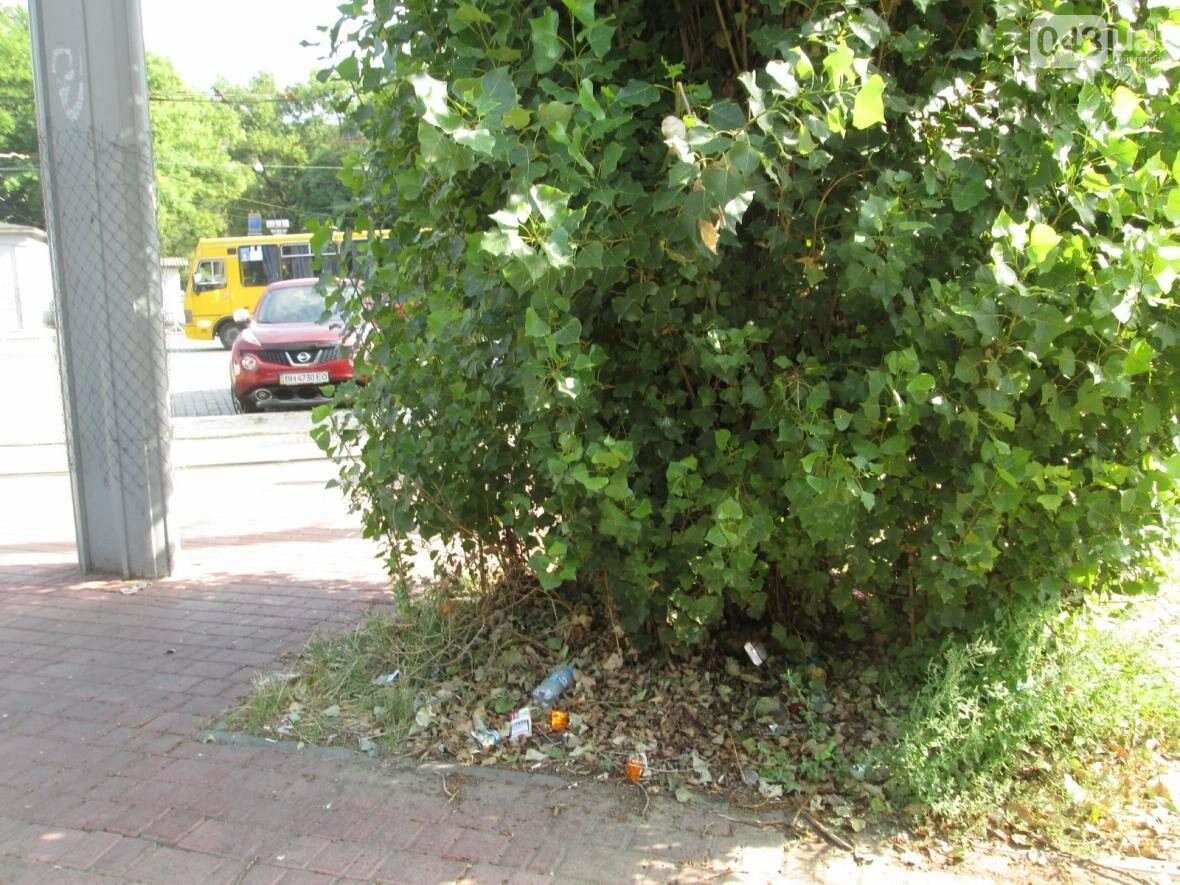 В центре Одессы коммунальщики отказываются убирать мусор (ФОТО), фото-22