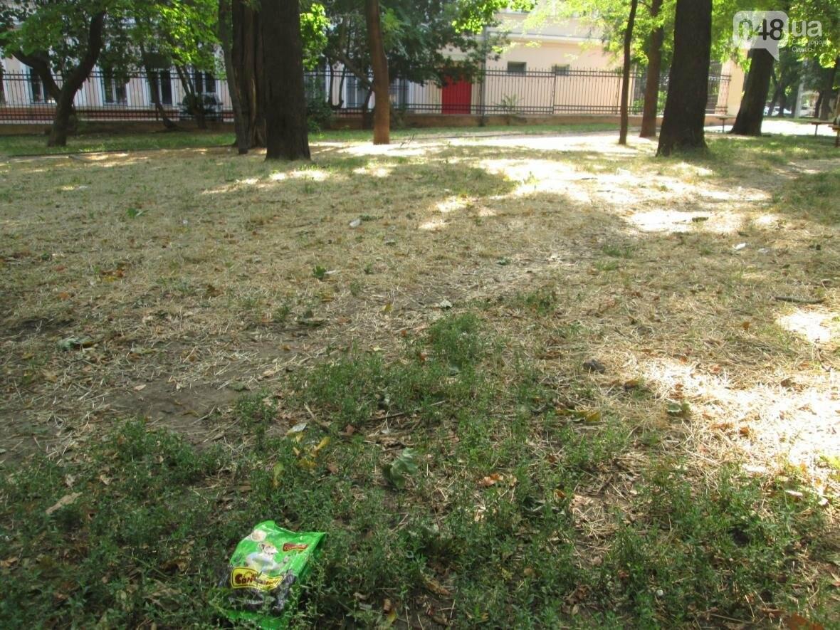 В центре Одессы коммунальщики отказываются убирать мусор (ФОТО), фото-34