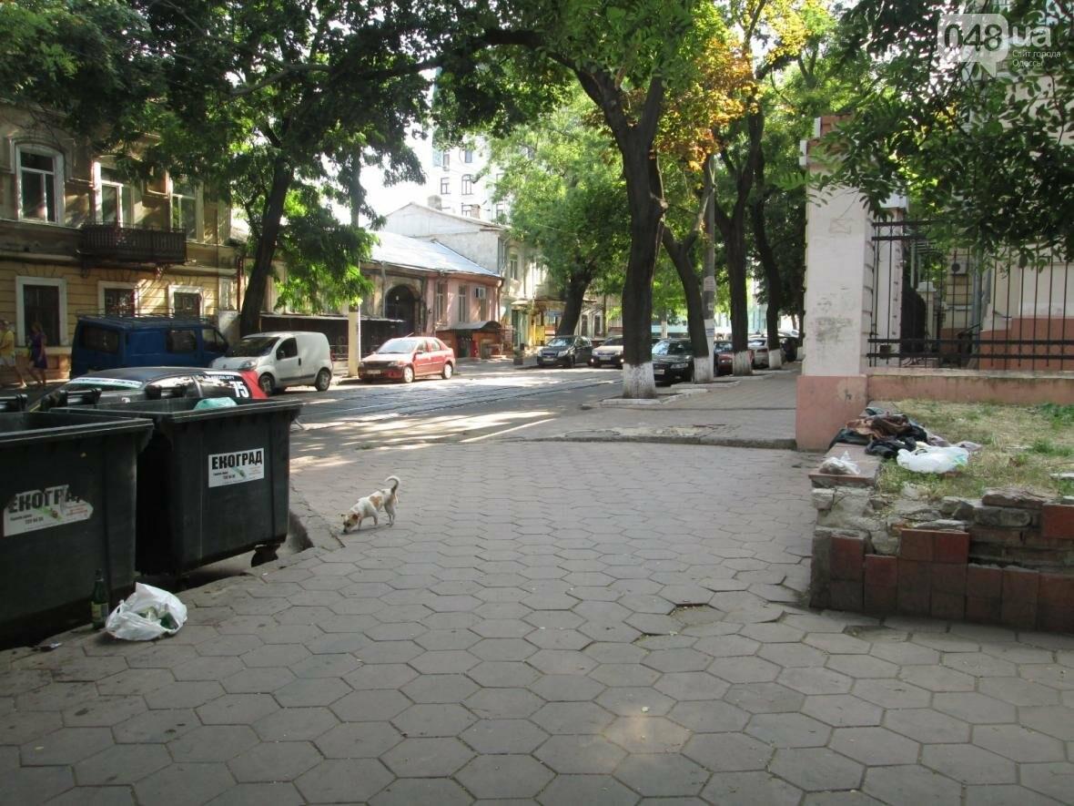 В центре Одессы коммунальщики отказываются убирать мусор (ФОТО), фото-15