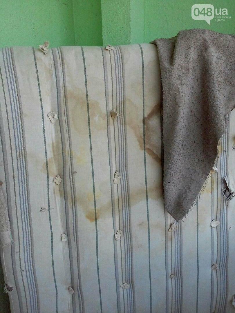 Ужасы областной больницы в Одессе: Собаки в коридоре и сплошная грязь (ФОТО), фото-3