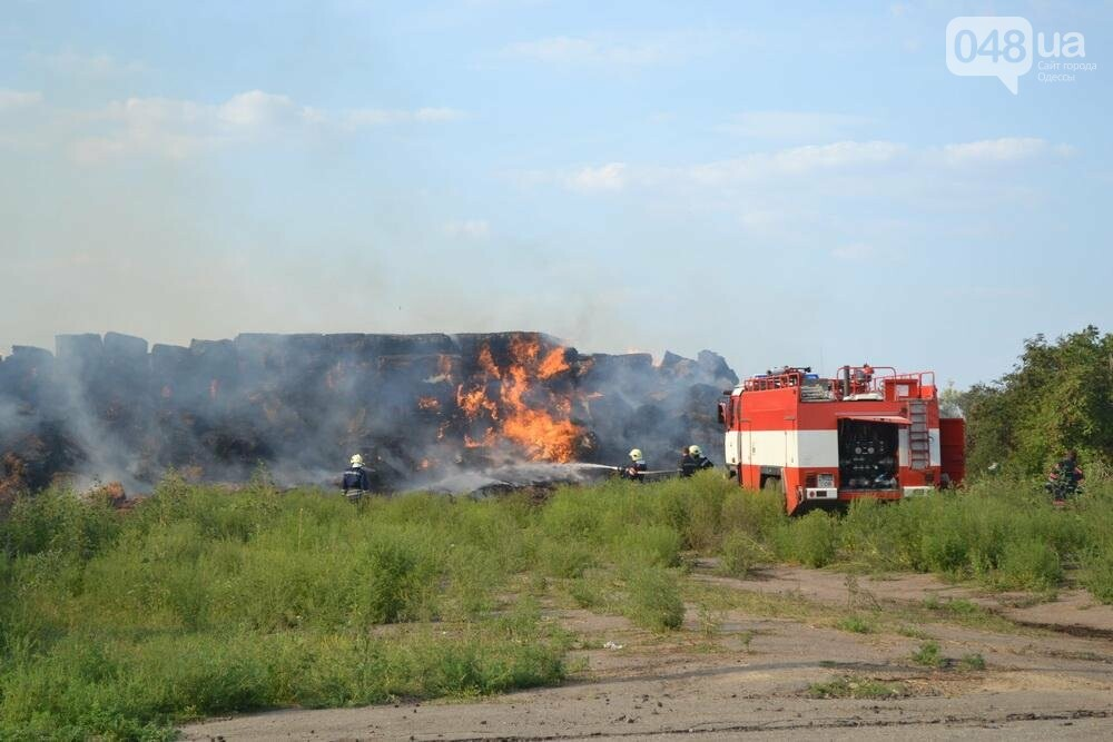 Под Одессой пожарные и солдаты спасали горящую солому (ФОТО), фото-2